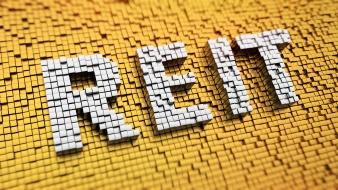 Pixelated REIT