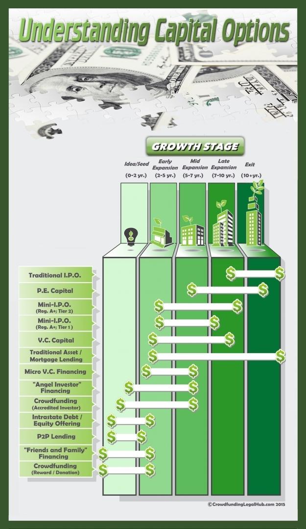 Understanding-Capital-Raising-Options-Infographic (Chart)