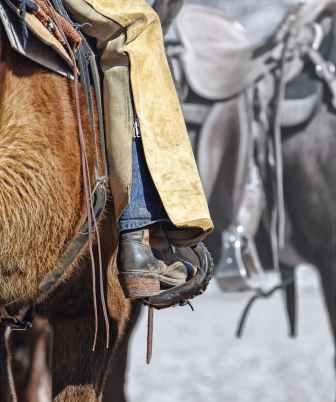 boot-cowgirl-horse-tack-51130.jpeg